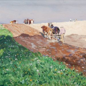Hugo Mühlig: Field work