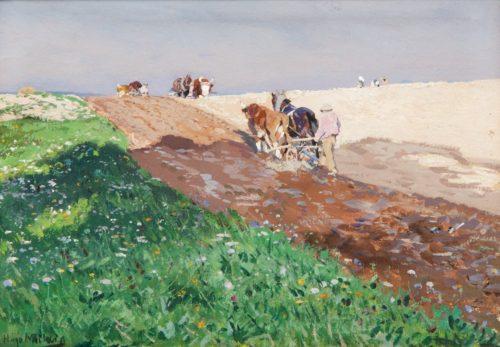 Hugo Mühlig: Feldarbeit