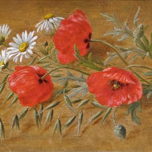 Christensen, Anthonore: Still life with poppies