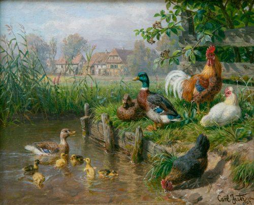 Jutz, Carl: Hühner und Enten, 1907