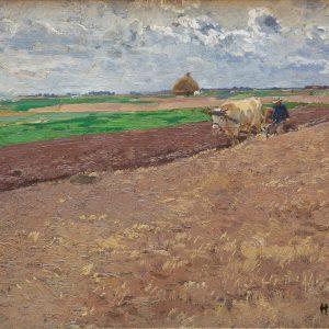 Hugo Mühlig: Ernte